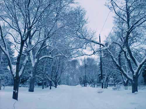 snowstreeta.jpg